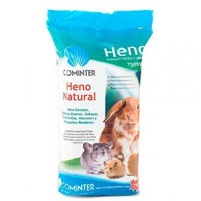 henocominter