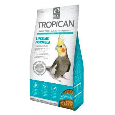 tropican-mantenimientoninfa