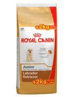 Royal Canin Labrador Junior www.lacasitadelsoanimales.com