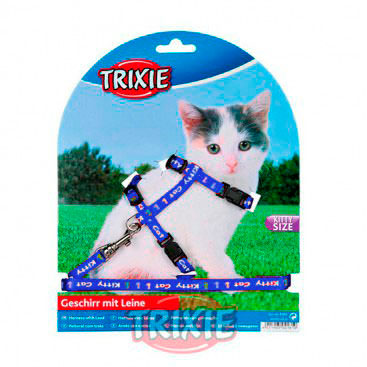 trixie-arnes-kitten-azul